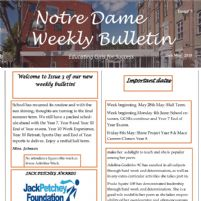 Weekly Bulletin Issue 4 Now Available!